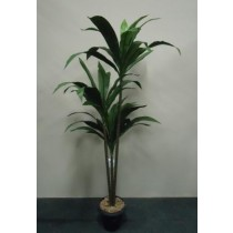 Planta Artificial Dracena Janete Verde 452766