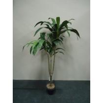 Planta Artificial Dracena Massangeana Verde 452765