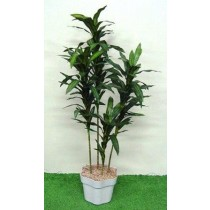 Planta Artificial Mini Dracena Verde 446463