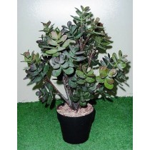 Planta Artificial Money Tree Plant Verde 446451