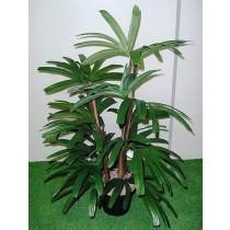 Planta Artificial Raphis Verde 446428