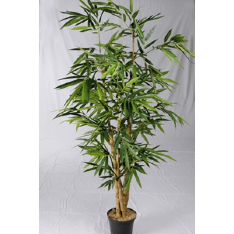 Planta artificial bambu multi verde 452799 planta - Bambu planta exterior ...